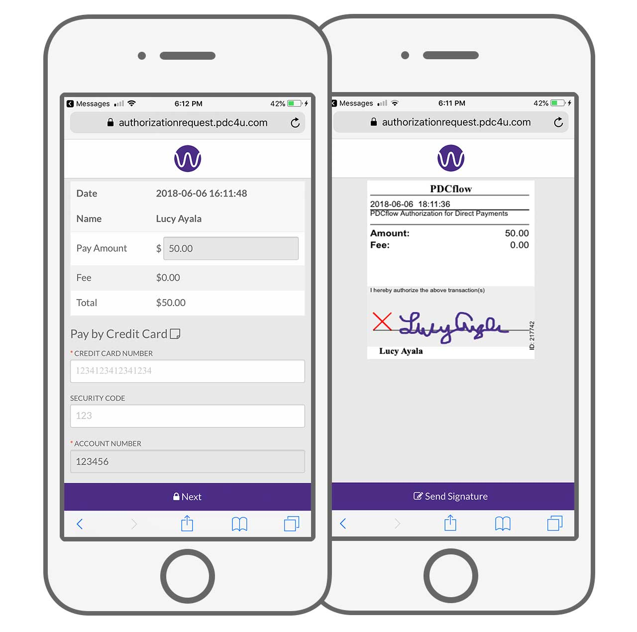 Secure Web Chat Payment Solution