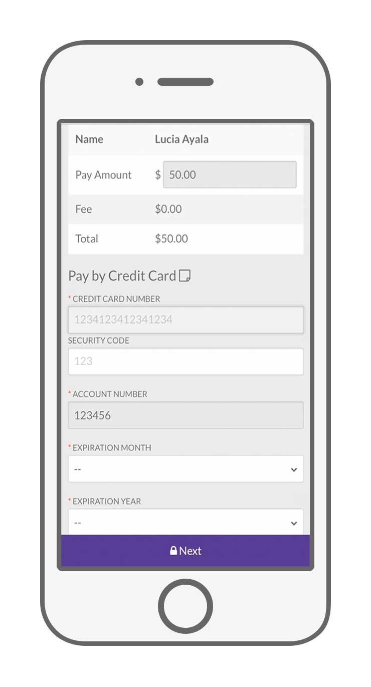 web chat payment solution