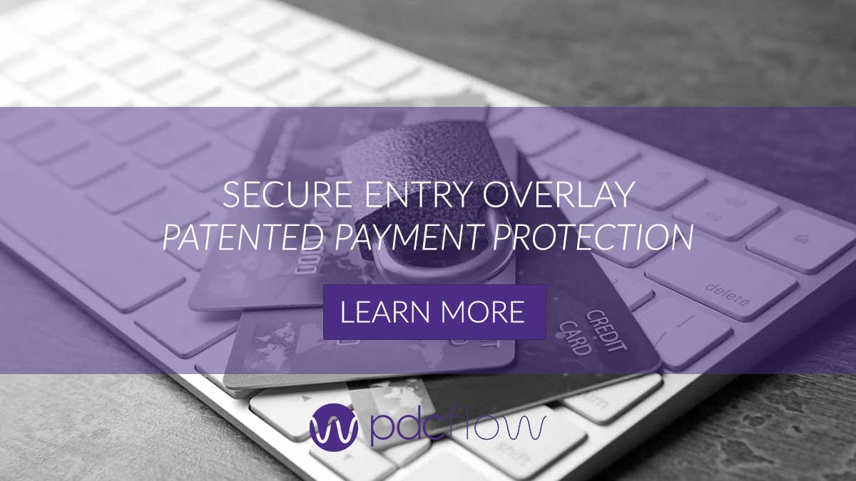 Secure Entry Overlay Patented Payment Protection