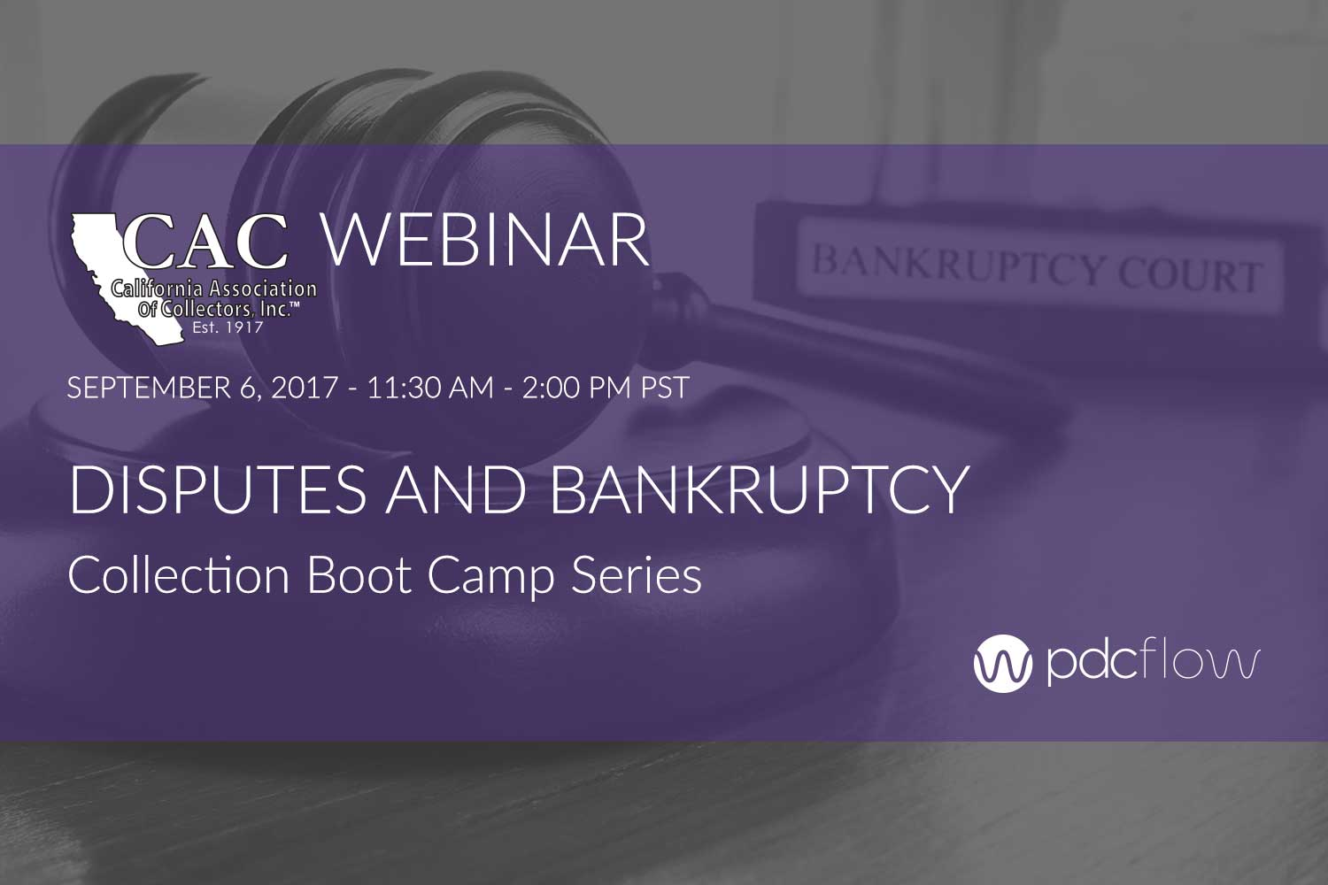 Disputes and Bankruptcy Collection Boot Camp Webinar